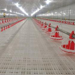 肉焼き器鶏のための純粋で物質的なプラスチックスラットの床