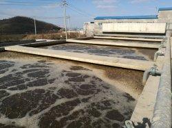 Matadero personalizada eliminación de aguas residuales del proyecto Equipos de fabricación