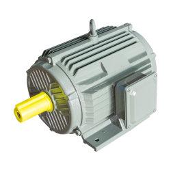 Asynchroner Induktions-Generatormotor mit hohem Wirkungsgrad, IE2 IE3 IE4 AC
