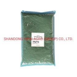 Ginger Paste in 10kg Plastiktüte für den industriellen Einsatz