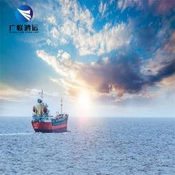 최고의 고객 서비스 Shenzhen 물류 회사 오션 화물 운송 상담원