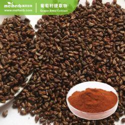 酸化防止剤の原料のブドウのシードのエキスProanthocyanidins 95%-98%