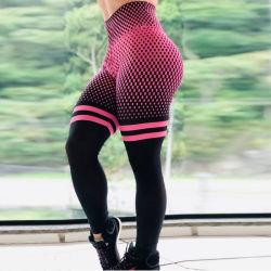 Pantalones baratos transpirable de pantalones de yoga
