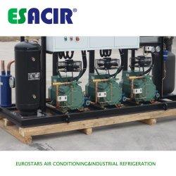 Semi герметичных компрессорного блока конденсационной установки стоек Cold Room охладителя блока управления