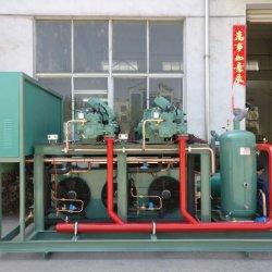 Econômico Bitzer Compressor de refrigeração sem condensação