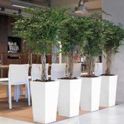 Fo-209 Flower Pot conique de jardin en fibre de verre Pot plantes Décoration du semoir