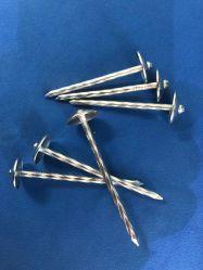 Können Nagel-lose Nagel-Stahl-Nagel-kundenspezifische Nägel in jeder möglicher Größe für örtlich festgelegten Soem kundenspezifischen CNC-maschinell bearbeitenEdelstahl-Lieferanten des Autos/des Automobils Ersatz/Motor/Pump gebildet werden