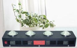 옥수수 속 플랜트는 의학 플랜트를 위한 램프 LED를 증가한다