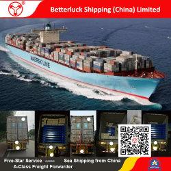 Грузовые перевозки логистика Службы доставки из Китая Наньша во Фримантл Австралии для установки в стойку