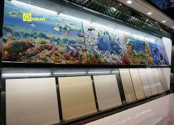 Material de construção de painéis de parede banho 3D para imagens