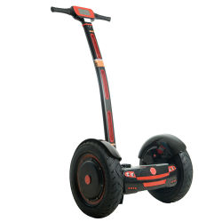 Las dos ruedas Electric Self-Balancing monociclo