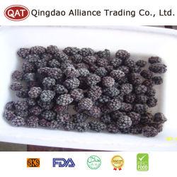 Caliente de fábrica de pulpa de la venta de fruta congelado IQF Blackberry Blackberry frutos enteros