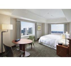 Zeitgenössischer Entwurfs-stellen moderne Hotelzimmer-Möbel hölzernen Möbel-Farbanstrich ein