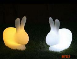 الصين إضاءة خارجية رخيص مصباح إضاءة أفقي ورنب ملون الديكور