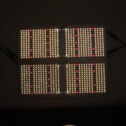 Yayi Fabrik Preis Full Spectrum 100W 150W 200W Flutlicht LED-Lampe für Pflanzenwachstum