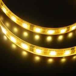 Colore flessibile dell'indicatore luminoso di striscia di IP65 5050 LED il singolo bianco/scalda/bianco/verde/indicatore luminoso blu/rosso/giallo della corda di AC220V 110V LED