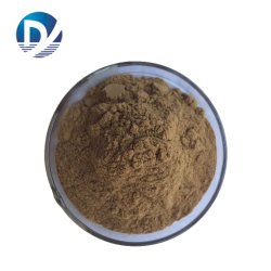 Alimentación el extracto de Ganoderma orgánico cápsulas de extracto de hongo Reishi