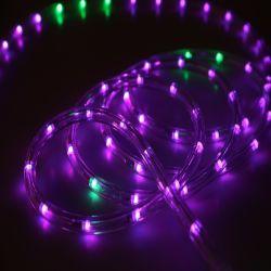 220V/110V/24V impermeabilizzano l'indicatore luminoso cambiante della corda di illuminazione LED della corda di colore esterno