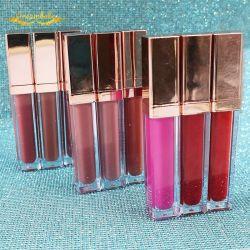 Оптовая торговля высокого качества в течение долгого времени Eyeshadow макияжа палитра водонепроницаемый химические жидкости моды матовая губная помада Private Label Lip gloss Косметический
