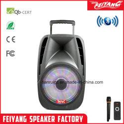 Feiyang Kvg 15'' chariot haute puissance de l'orateur avec karaoké F19