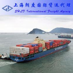 أحجز سعر في البحر من الصين إلى كوريا الجنوبية والوقت السريع