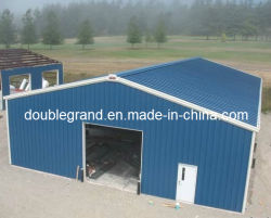 中国プレハブ式鋼構造物建設 / ワークショップ / 倉庫 / ハンガー / シェッド( DG3001 )