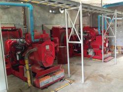 150 kw/50Hz/60Hz el Gas Natural/Syngas/ Biogás/Grupos Electrógenos Grupos Electrógenos