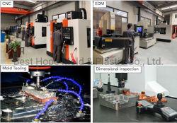 Erstausführung/Form-Fertigungsmittel/Plastikformteil/China-Form-Fabrik/Form/Plastikform