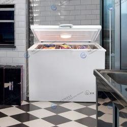 100L kleine gewerbliche Tiefkühltruhe mit einer Tür, Kühlschrank, Mini-Truhe Gefrierschrank mit Gems MEPs genehmigt HD-100