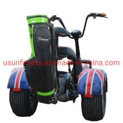 3지방 타이어 골프 스쿠터 CE 인증 2 시트 전기 자동차(NY-E9)