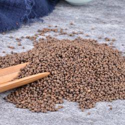 Ji Xing Zi 경쟁력 있는 가격 최고 품질 Seed Herb Seed 가든 발삼 정액 파티스