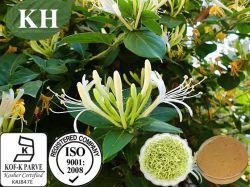 100% natural Extrato Madresilva: Ácidos Chlorogenic5%-98%