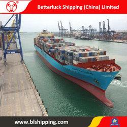 중국에서 병참술 Southampton 대양에 출하 바다 운임