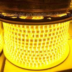 Haut Lumen5050/5730 SMD RGB 12V 220V 3000K 60LED/M Outdoor compteur Striplight en vertu de LED