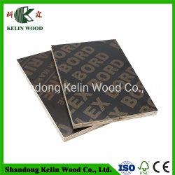Pisos /Poplar Core Blockboard Marine marrom/preto de contraplacado Logotipo com