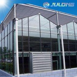 La Chine de haute qualité de l'espace serre hydroponique Venlo mur de verre pour la vente