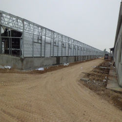 Structure en acier de poulet de l'entrepôt La Ferme des animaux de la volaille de délestage des maisons avec un bon prix