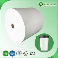 A China a maioria dos fabricantes de papel revestido a PE Avançada