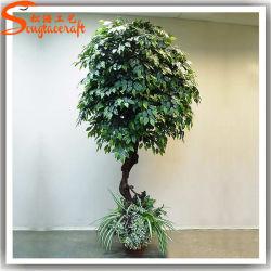 El mejor venta de bonsáis artificiales Ficus microcarpa