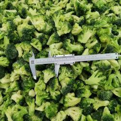 Оптовая торговля свежей брокколи Floret IQF замороженных брокколи с заводская цена для изготовителей оборудования