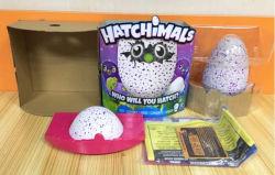 Ovos para incubação Self-Hatch Hatchimals Toy Hatchimals pinguins ovo em crescimento