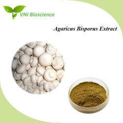 Alta calidad 100% puro de Agaricus bisporus Extracto para mejorar la inmunidad