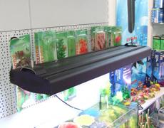 Lampe des Aquarium-T5 im Schwarzen, silberner Fall