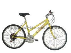 24/26pulgadas Dama Bicicleta de Montaña MTB-025