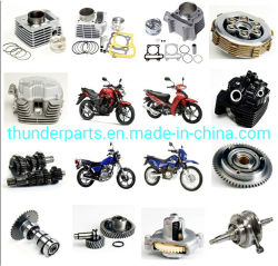 Pezzi di ricambio degli accessori del motociclo per i tricicli dei motorini di 125cc 150cc 200cc Dirtbike
