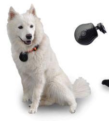 Digital-Haustier-Augen-Ansicht-Nocken-Muffen-Kamera-Videogerät-Monitor für Hundekatze Puppys (avp004D)
