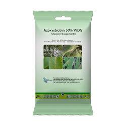 Fungicida del re Quenson Agrochemical Bactericide Azoxystrobin 95% TC 50% Wdg