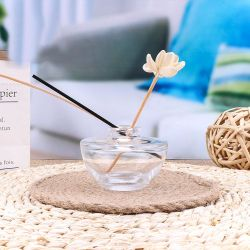 Bouteille de verre du meilleur prix diffuseur de parfum Reed/ Accueil