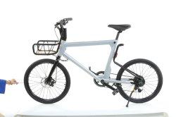 지능적인 전기 Bike/E 자전거