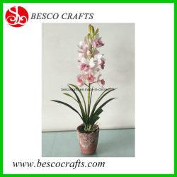 47 cm de hauteur d'orchidée artificielle tactile réel de fleurs en pot de ciment